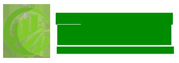 Diệt Mối Quảng Nam – Công ty diệt mối tại Quảng Nam – LH:  0974 808 584